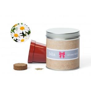 Kit de cultivo de margaritas en lata personalizada
